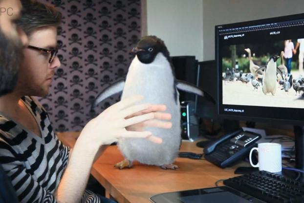 Behind the scenes of the making of Monty the Penguin